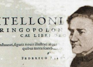 Witelon